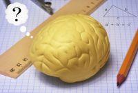 Aivojumppaa alakoululaisille
