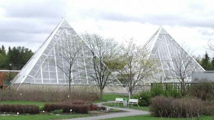 Jurassic Garden -näyttely Oulun yliopiston kasvitieteellisessä puutarhassa