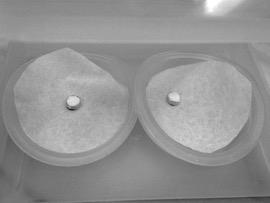 Luminesenssimittauksia ja työryhmäseminaari