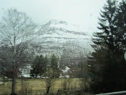 Norjaa (5)