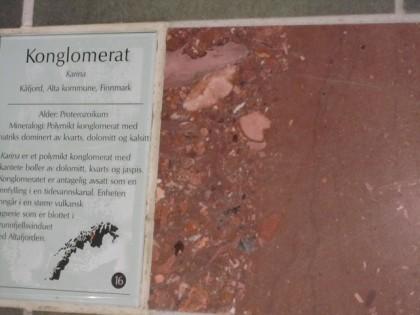 Tromssan yliopiston laattalattiaa(1) (1)