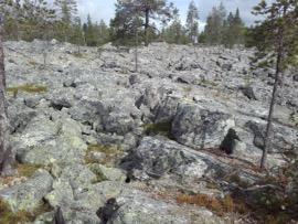 Kiviainespuuhastelua Lapissa – Osa 1