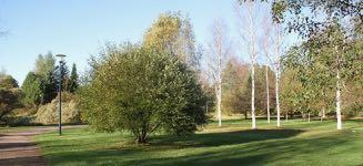 Ruskaretki kasvitieteelliseen puutarhaan 6.10.2020